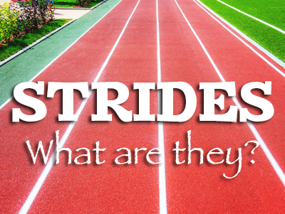Strides What Are They