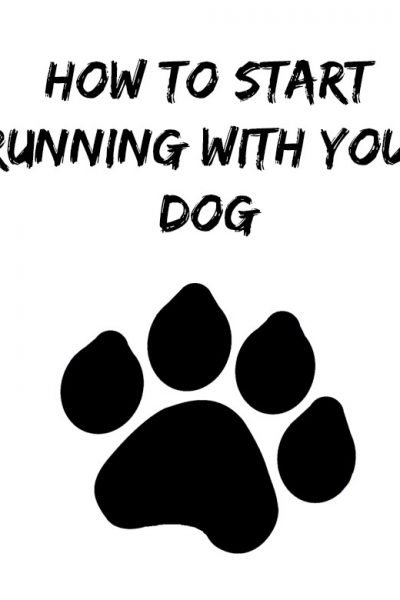 Start Running With Your Dog