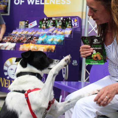 Visit the Wellness Natural Pet Food Wagon at Pooch-A-Palooza This Weekend!