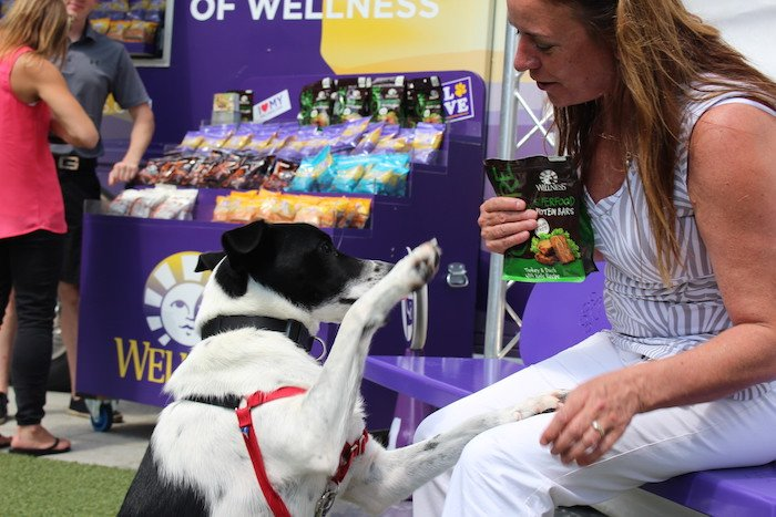 Wellness Natural Pet Food Wagon on the Greenway2