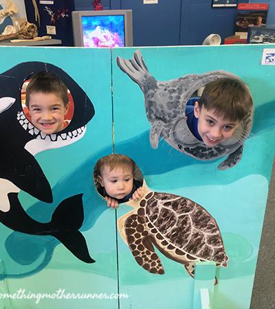 National Marine Life Center Photo Fun