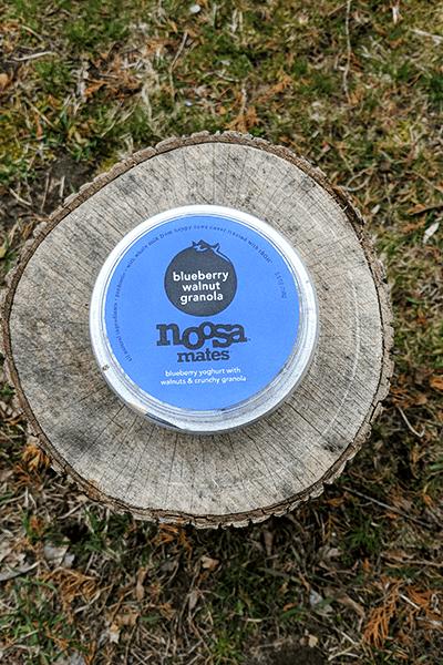 noosa blueberry